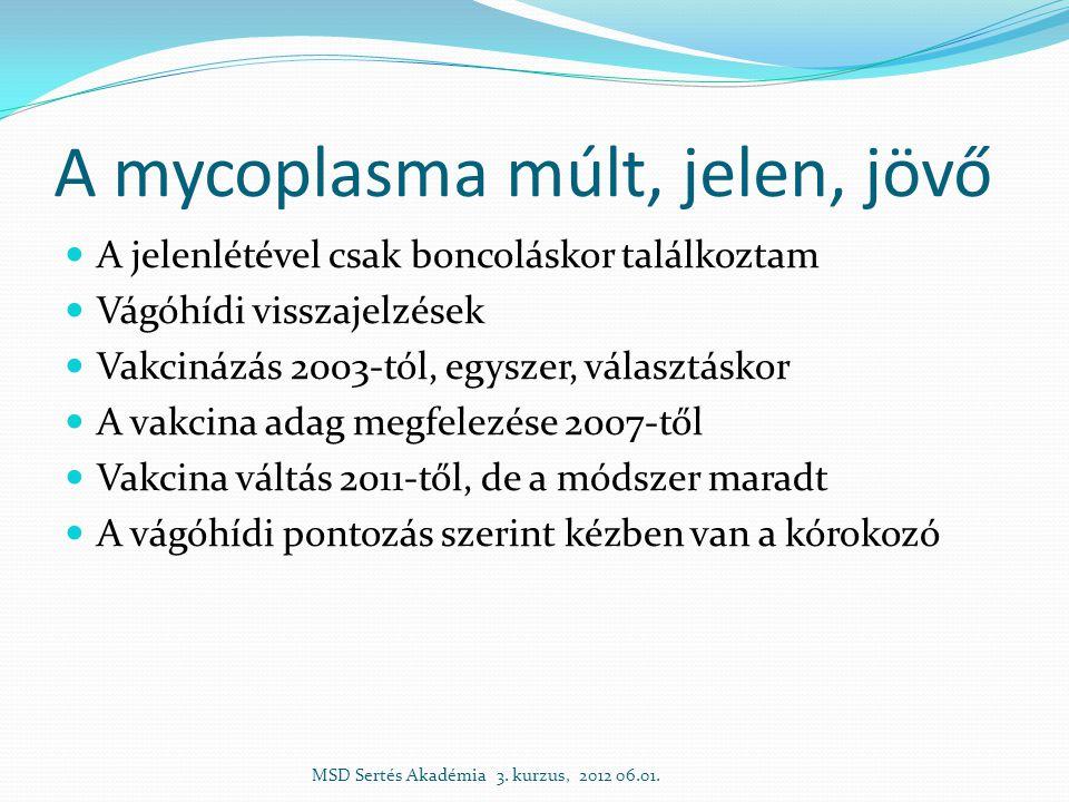 A mycoplasma múlt, jelen, jövő  A jelenlétével csak boncoláskor találkoztam  Vágóhídi visszajelzések  Vakcinázás 2003-tól, egyszer, választáskor  A vakcina adag megfelezése 2007-től  Vakcina váltás 2011-től, de a módszer maradt  A vágóhídi pontozás szerint kézben van a kórokozó MSD Sertés Akadémia 3.