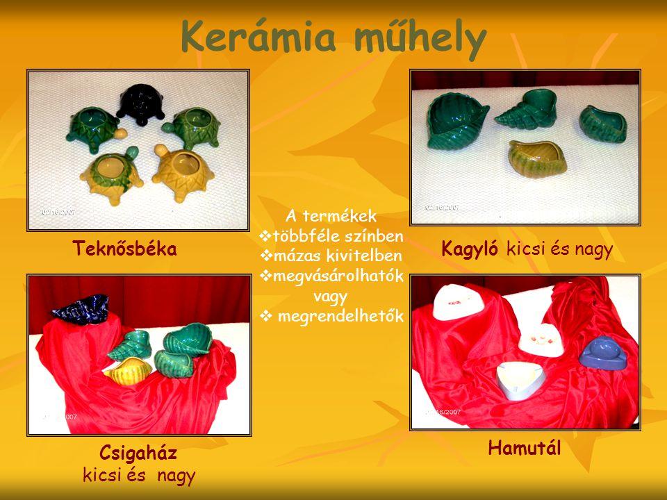 Kerámia műhely A termékek  többféle színben  mázas kivitelben  megvásárolhatók vagy  megrendelhetők Kagyló kicsi és nagyTeknősbéka Csigaház kicsi és nagy Hamutál