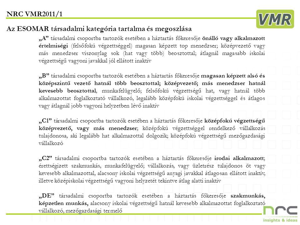 VMR2011 I. félév INTERNET HASZNÁLAT ÉS DEMOGRÁFIA