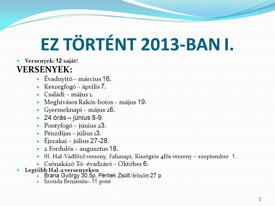 EZ TÖRTÉNT 2013-BAN II.