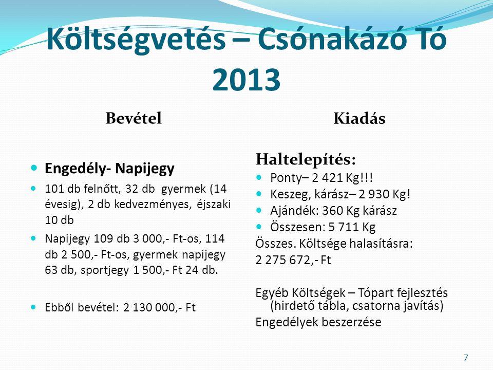Költségvetés – Csónakázó Tó 2013 Bevétel Kiadás  Engedély- Napijegy  101 db felnőtt, 32 db gyermek (14 évesig), 2 db kedvezményes, éjszaki 10 db  N