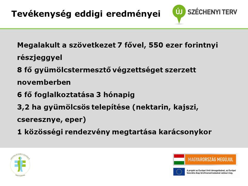 9 •A terület bekerítésre kerül •Kapcsolatok felvétele Debreceni Egyetemmel, Kertészeti Egyetemmel •Áramfejlesztő vásárlás, gépkocsi vásárlás Tevékenység eddigi eredményei II