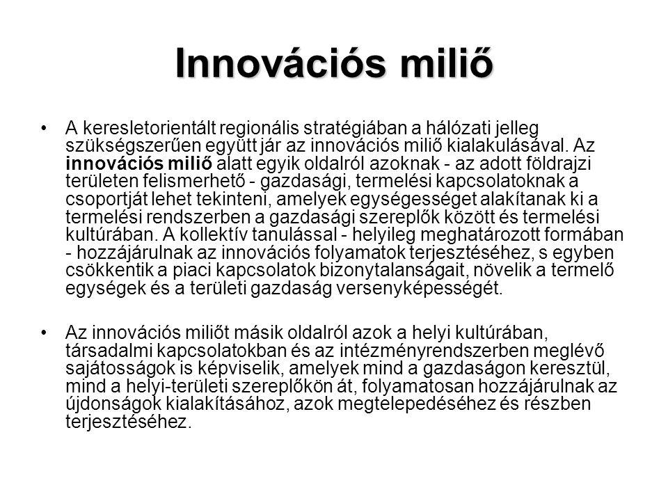 Innovációs miliő •A keresletorientált regionális stratégiában a hálózati jelleg szükségszerűen együtt jár az innovációs miliő kialakulásával. Az innov