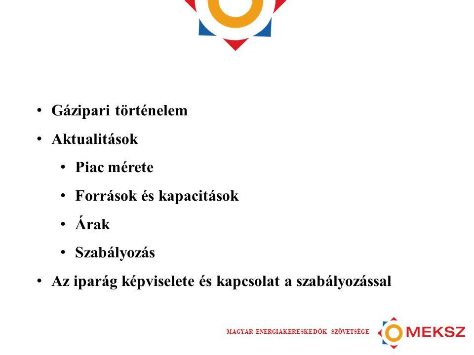 MAGYAR ENERGIAKERESKED Ő K SZÖVETSÉGE A magyar földgáz ipar • A mesterséges városi gáz 158 éve (1856), a földgáz 55 éve van jelen az életünkben (1959) • A rendszerváltás óta folyamatos iparági változások • 1990 – 1997.