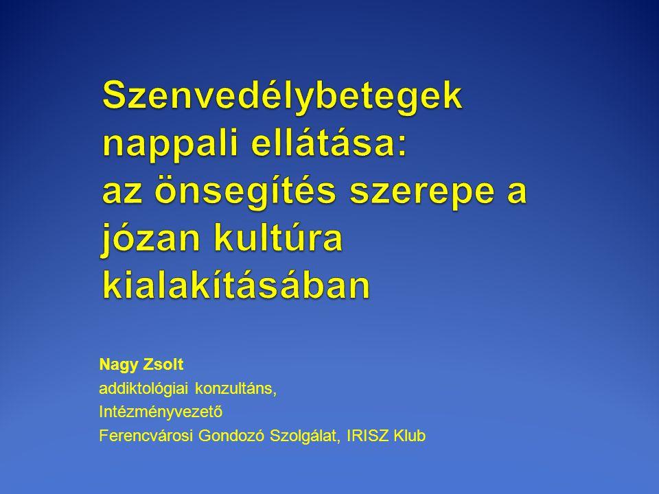 Nagy Zsolt addiktológiai konzultáns, Intézményvezető Ferencvárosi Gondozó Szolgálat, IRISZ Klub