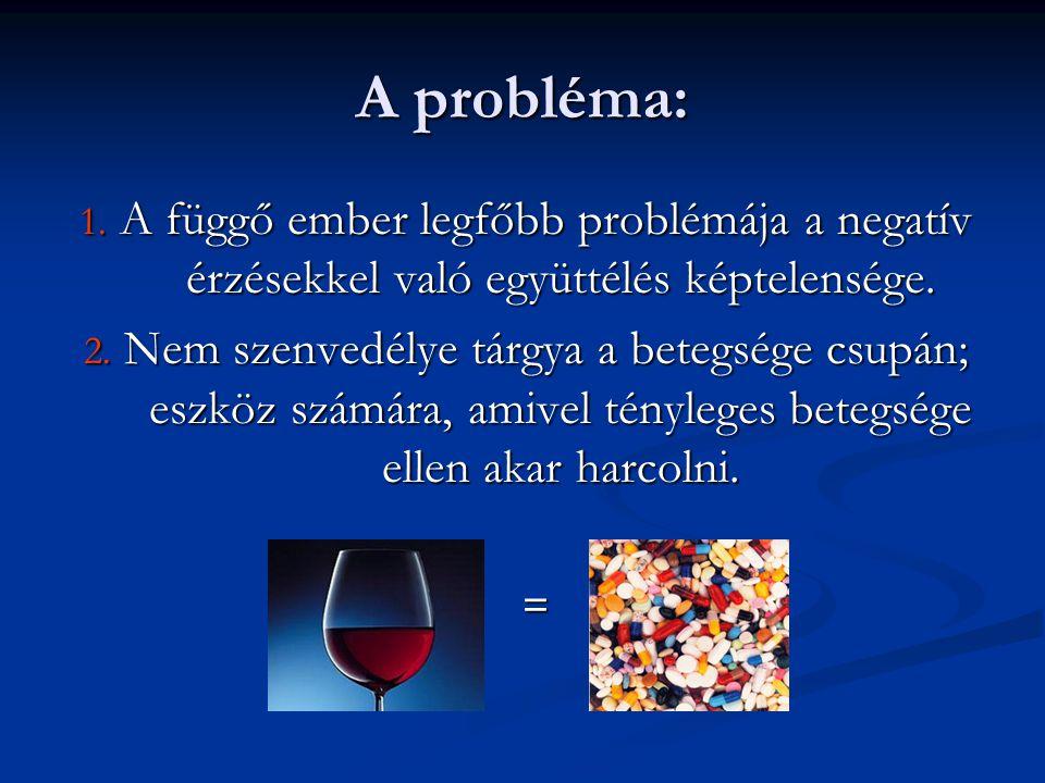 A probléma: 1. A függő ember legfőbb problémája a negatív érzésekkel való együttélés képtelensége. 2. Nem szenvedélye tárgya a betegsége csupán; eszkö