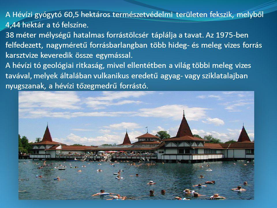 A Hévízi gyógytó 60,5 hektáros természetvédelmi területen fekszik, melyből 4,44 hektár a tó felszíne.