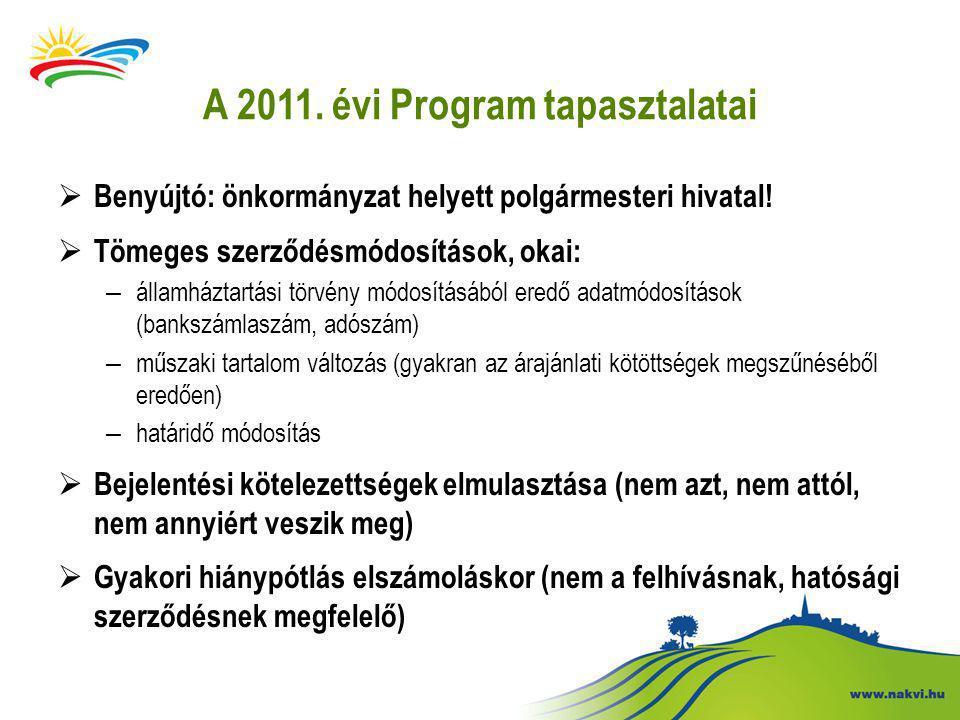 A 2011. évi Program tapasztalatai  Benyújtó: önkormányzat helyett polgármesteri hivatal.