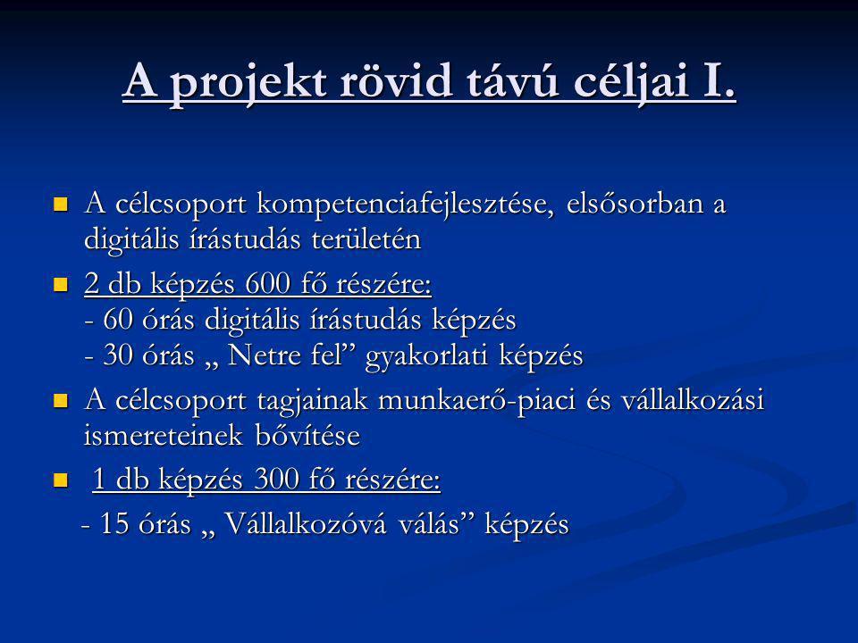 A projekt rövid távú céljai I.