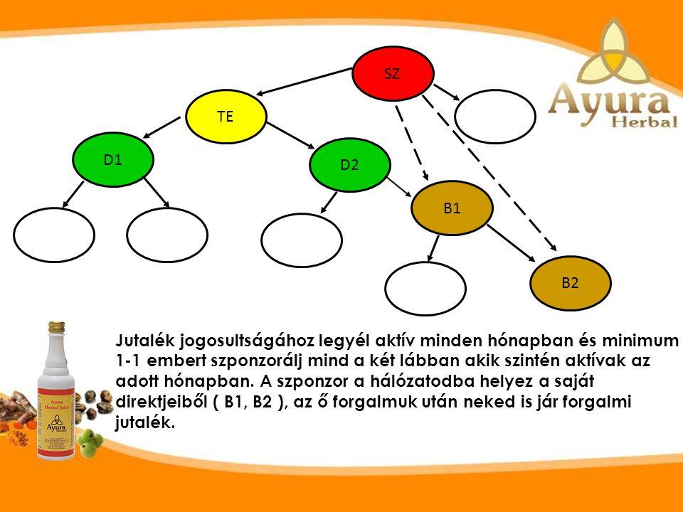Bármennyi szponzoráltad lehet de ezek kettő lábban egymás alá kerülnek be a hálózatba. ( Lásd D1, D2, D3, D4 ) SZ TE D1 D4 D2 D3