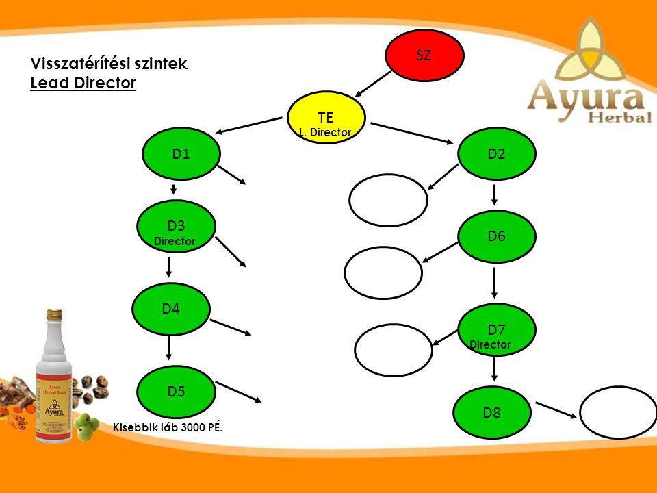 SZ TE D1 D3 D5 D4 D8 D7 D6 D2 Visszatérítési szintek Lead Director L.