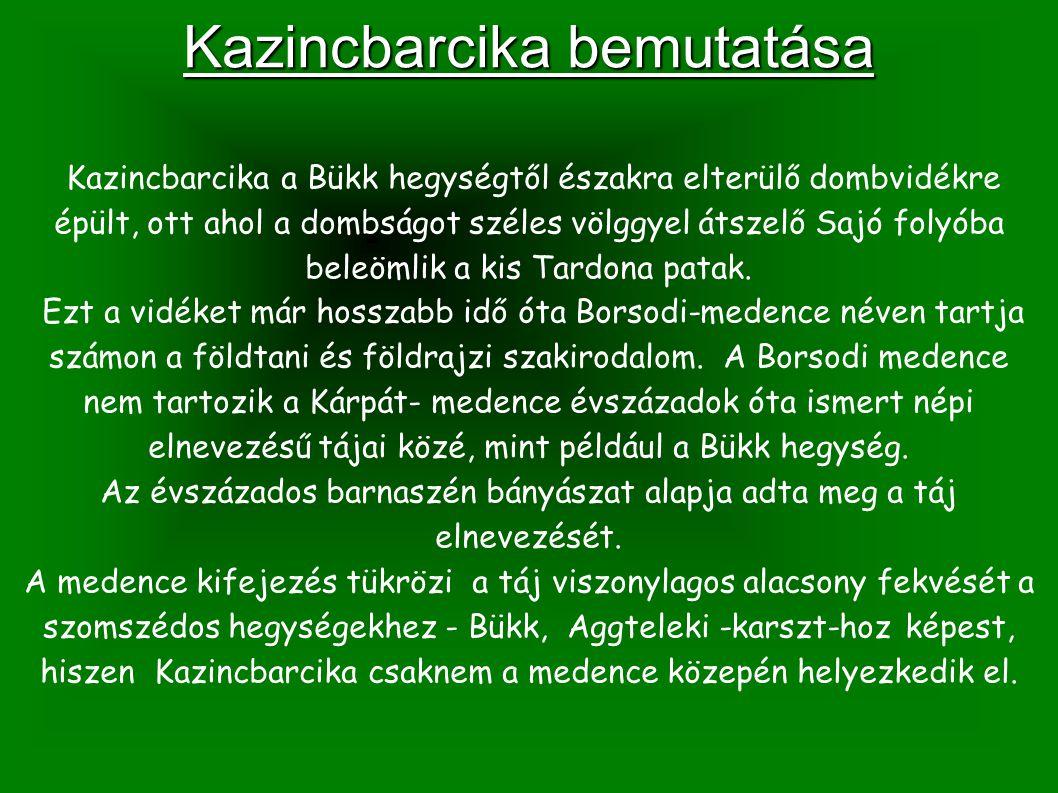 Kazincbarcika bemutatása Kazincbarcika a Bükk hegységtől északra elterülő dombvidékre épült, ott ahol a dombságot széles völggyel átszelő Sajó folyóba