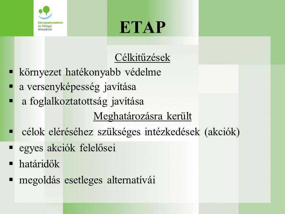 Célkitűzések  környezet hatékonyabb védelme  a versenyképesség javítása  a foglalkoztatottság javítása Meghatározásra került  célok eléréséhez szükséges intézkedések (akciók)  egyes akciók felelősei  határidők  megoldás esetleges alternatívái