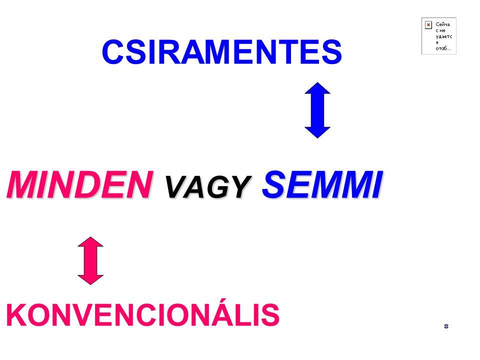 12 MINDEN VAGY SEMMI CSIRAMENTES MINDEN VAGY SEMMI KONVENCIONÁLIS