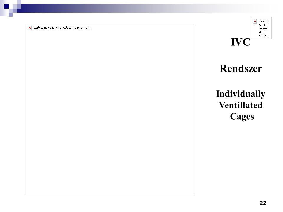 22 IVC Rendszer Individually Ventillated Cages