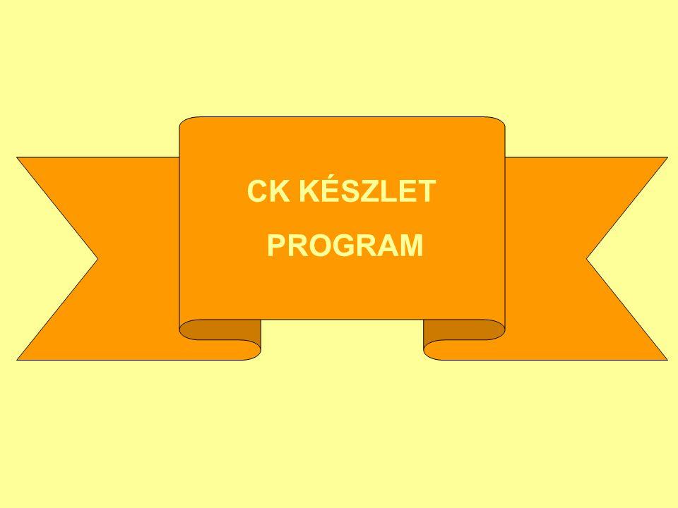 CK KÉSZLET PROGRAM