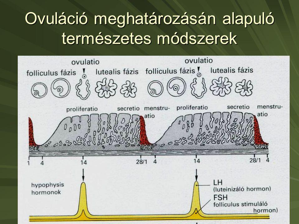 Ovuláció meghatározásán alapuló természetes módszerek