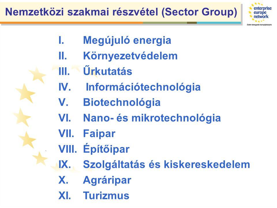 Nemzetközi szakmai részvétel (Sector Group) I.Megújuló energia II.Környezetvédelem III.Űrkutatás IV.