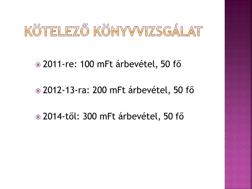  2011-re: 100 mFt árbevétel, 50 fő  2012-13-ra: 200 mFt árbevétel, 50 fő  2014-től: 300 mFt árbevétel, 50 fő