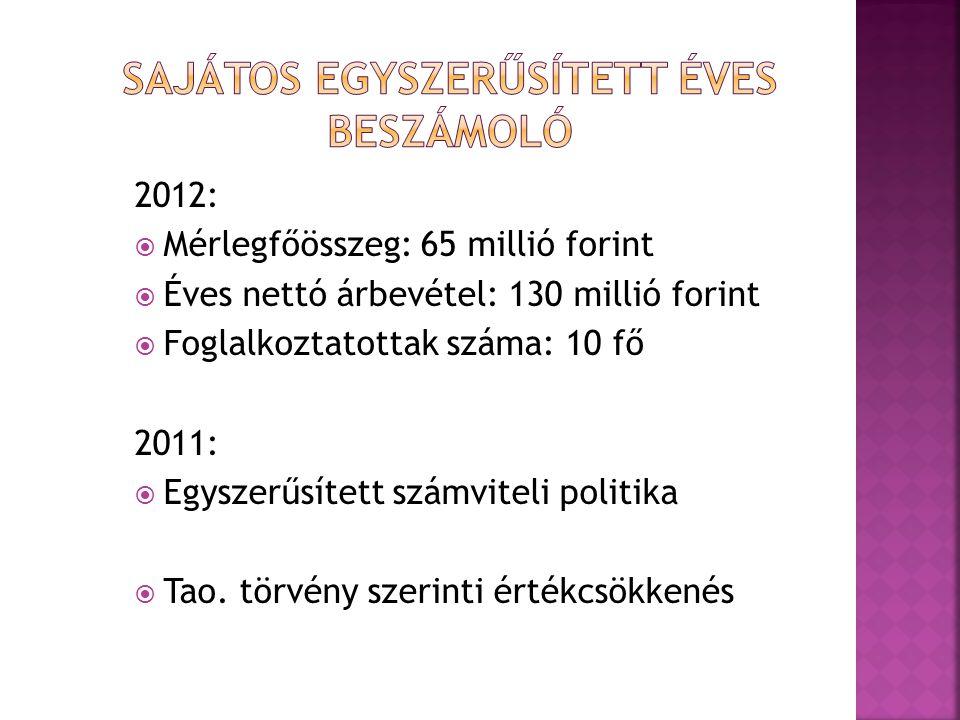 2012:  Mérlegfőösszeg: 65 millió forint  Éves nettó árbevétel: 130 millió forint  Foglalkoztatottak száma: 10 fő 2011:  Egyszerűsített számviteli politika  Tao.