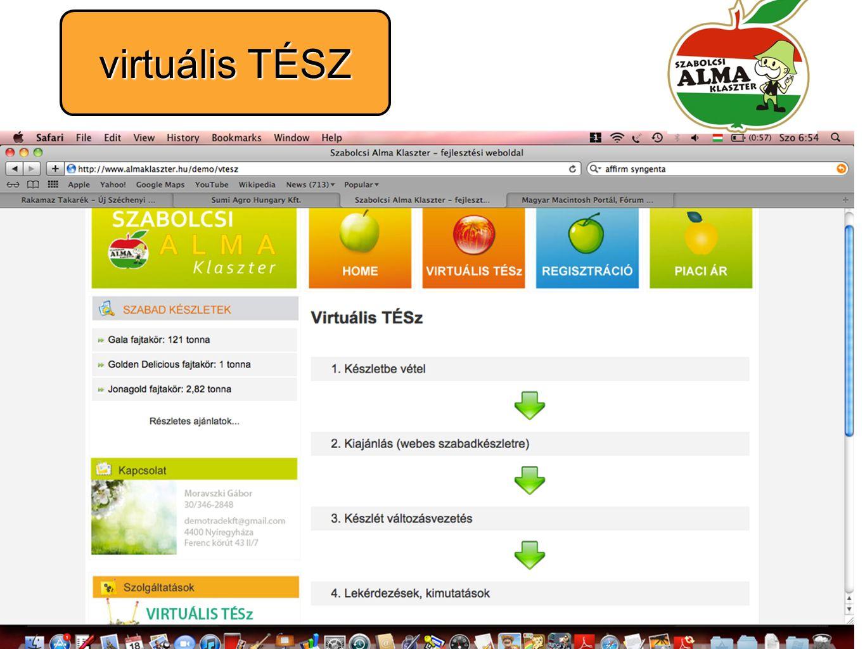 virtuális TÉSZ
