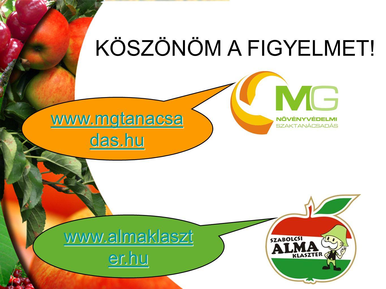KÖSZÖNÖM A FIGYELMET! www.mgtanacsa das.hu www.mgtanacsa das.hu www.almaklaszt er.hu www.almaklaszt er.hu