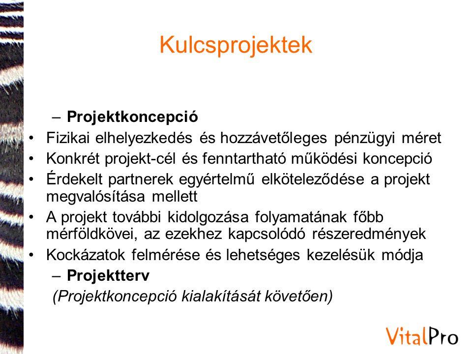 Kulcsprojektek –Projektkoncepció •Fizikai elhelyezkedés és hozzávetőleges pénzügyi méret •Konkrét projekt-cél és fenntartható működési koncepció •Érde