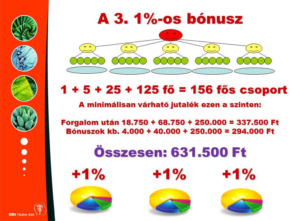 A 3. 1%-os bónusz +1% 1 + 5 + 25 + 125 fő = 156 fős csoport A minimálisan várható jutalék ezen a szinten: Forgalom után 18.750 + 68.750 + 250.000 = 33
