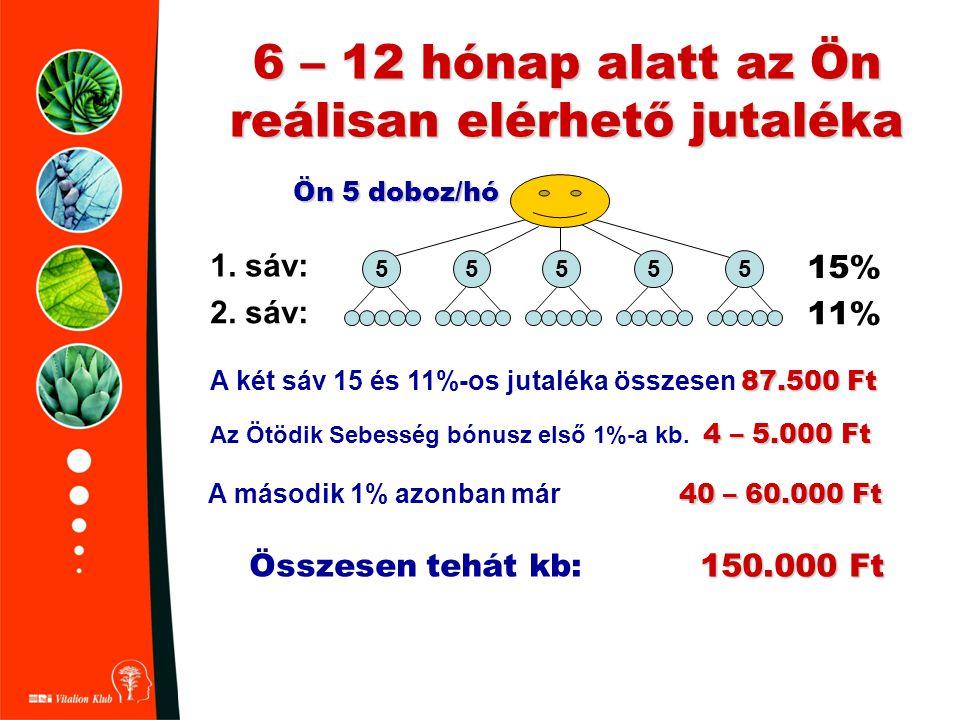 6 – 12 hónap alatt az Ön reálisan elérhető jutaléka 1. sáv: 15% 2. sáv: 11% 55555 4 – 5.000 Ft Az Ötödik Sebesség bónusz első 1%-a kb. 4 – 5.000 Ft 87