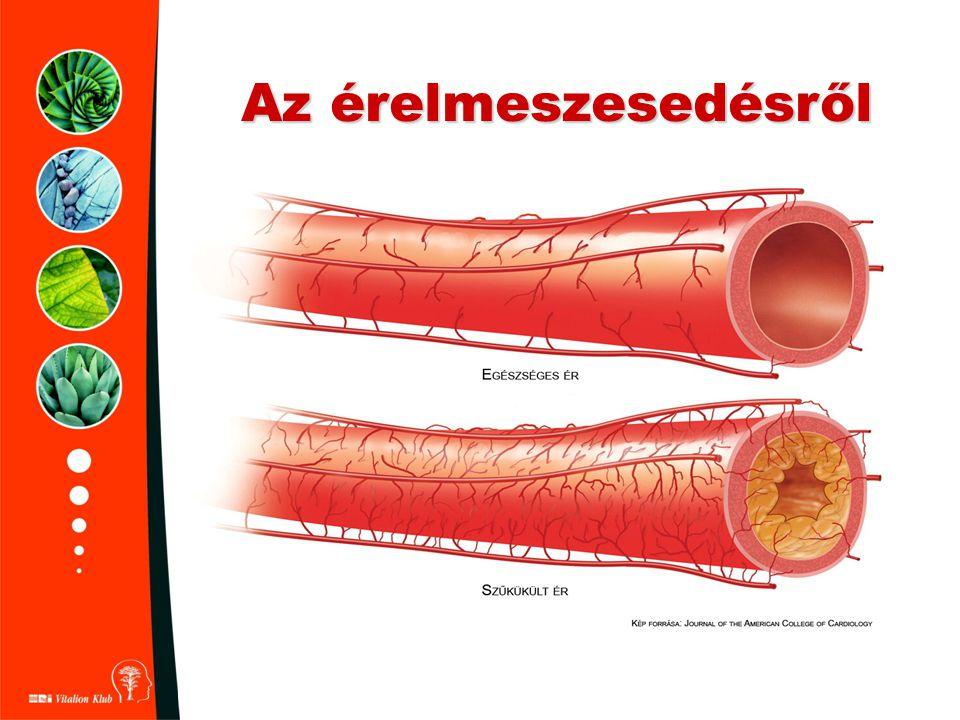 HRI Garlic Fokhagyma tabletta - meghűlés,hurut,légúti problémák - baktérium, gomba és vírusölő - gyulladásos problémák - magas vérnyomás - cukorbetegség - pollenallergia - szénanátha