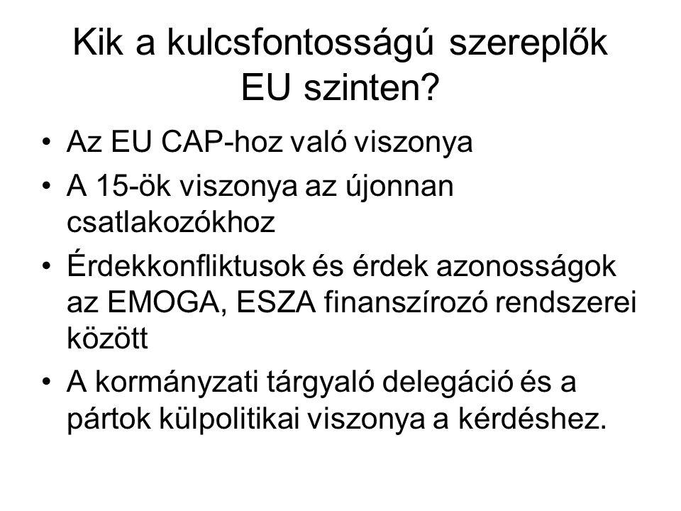 Kik a kulcsfontosságú szereplők EU szinten.