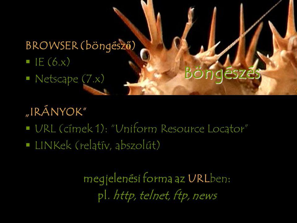 """BROWSER (böngész ő )  IE (6.x)  Netscape (7.x) """"IRÁNYOK  URL (címek 1): Uniform Resource Locator  LINKek (relatív, abszolút) megjelenési forma az URLben: pl.http, telnet, ftp, news B öngészés"""
