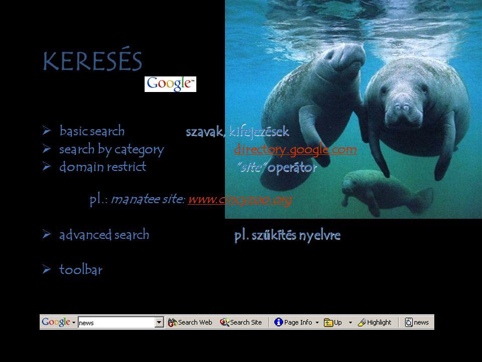 directory / könyvtár •Böngészés egy struktúrában •Szerkesztett alapja a tárgyi kategorizálás •Találat oldalak listája 1 biz.