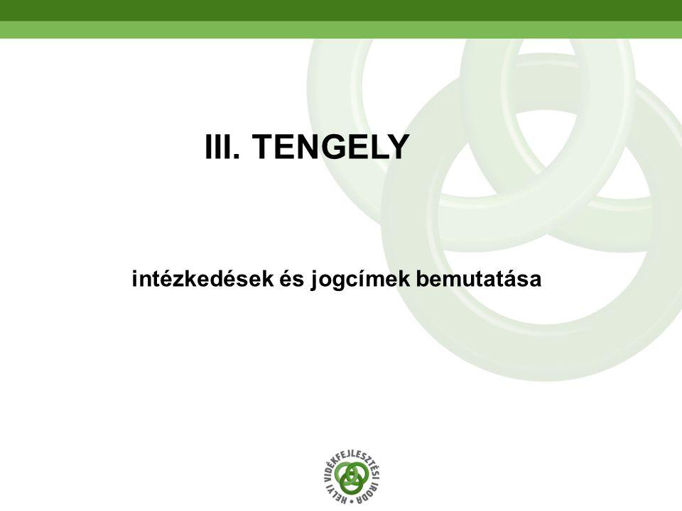54 intézkedések és jogcímek bemutatása III. TENGELY