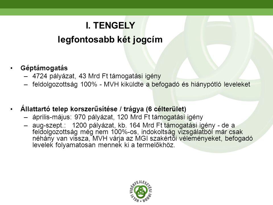 58 III.Tengely 2.