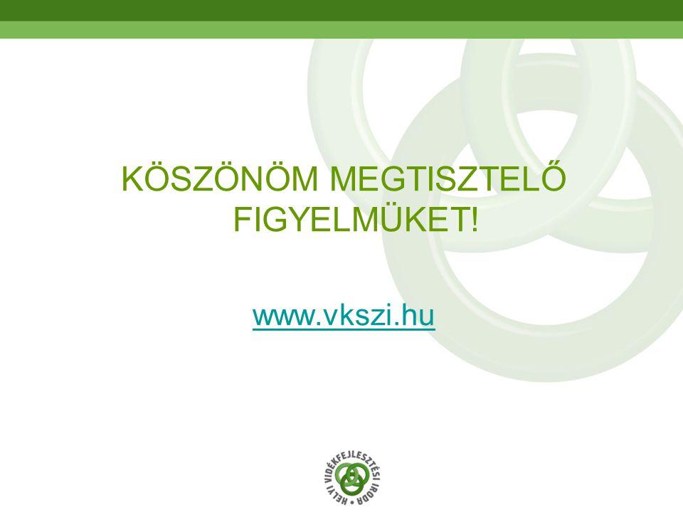 70 KÖSZÖNÖM MEGTISZTELŐ FIGYELMÜKET! www.vkszi.hu