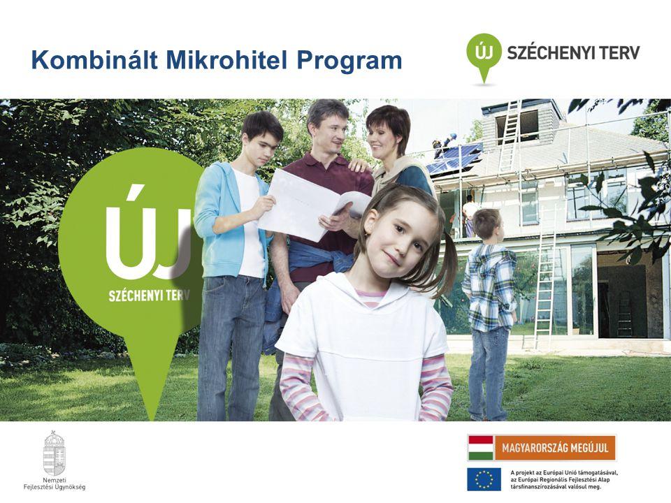 Kombinált Mikrohitel Program
