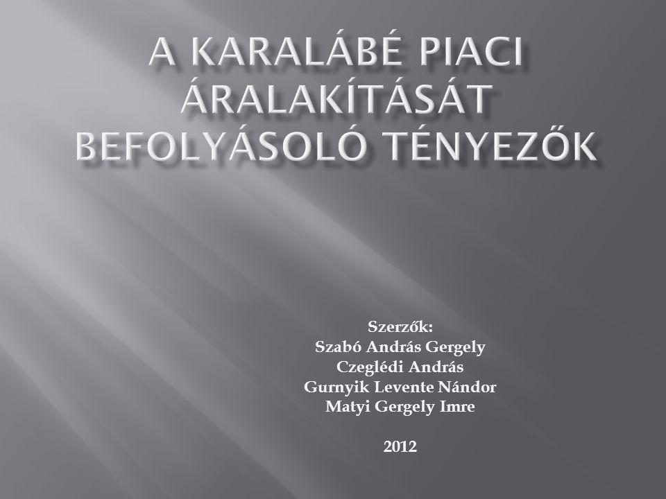 Szerzők: Szabó András Gergely Czeglédi András Gurnyik Levente Nándor Matyi Gergely Imre 2012