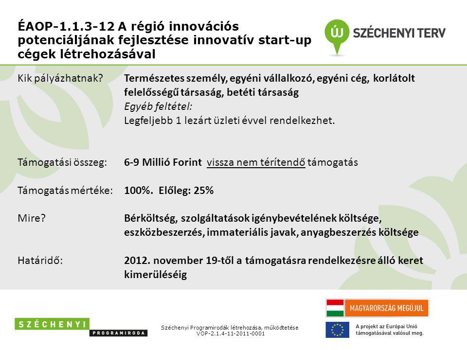 ÉAOP-1.1.3-12 A régió innovációs potenciáljának fejlesztése innovatív start-up cégek létrehozásával Széchenyi Programirodák létrehozása, működtetése V