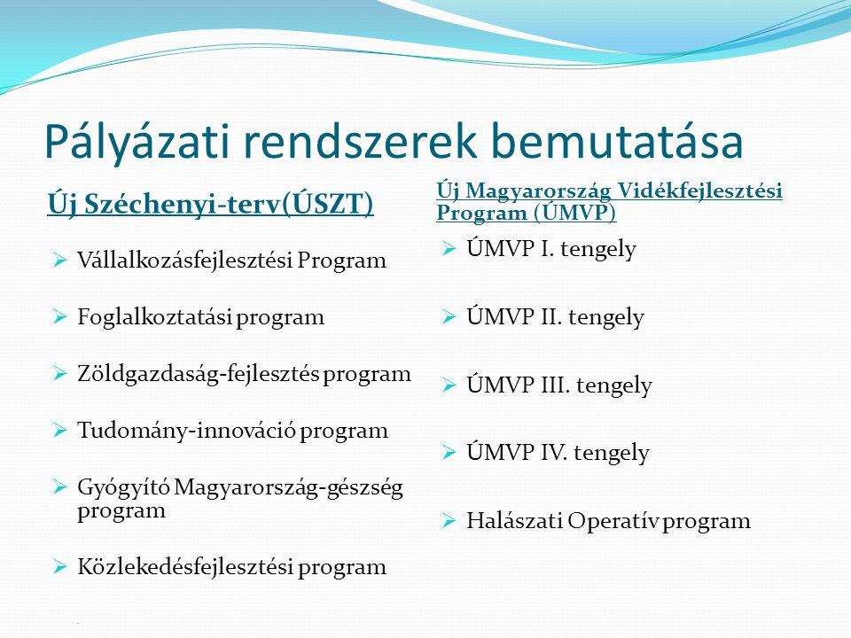 Pályázati rendszerek bemutatása Új Széchenyi-terv(ÚSZT) Új Magyarország Vidékfejlesztési Program (ÚMVP)  Vállalkozásfejlesztési Program  Foglalkoztatási program  Zöldgazdaság-fejlesztés program  Tudomány-innováció program  Gyógyító Magyarország-gészség program  Közlekedésfejlesztési program.