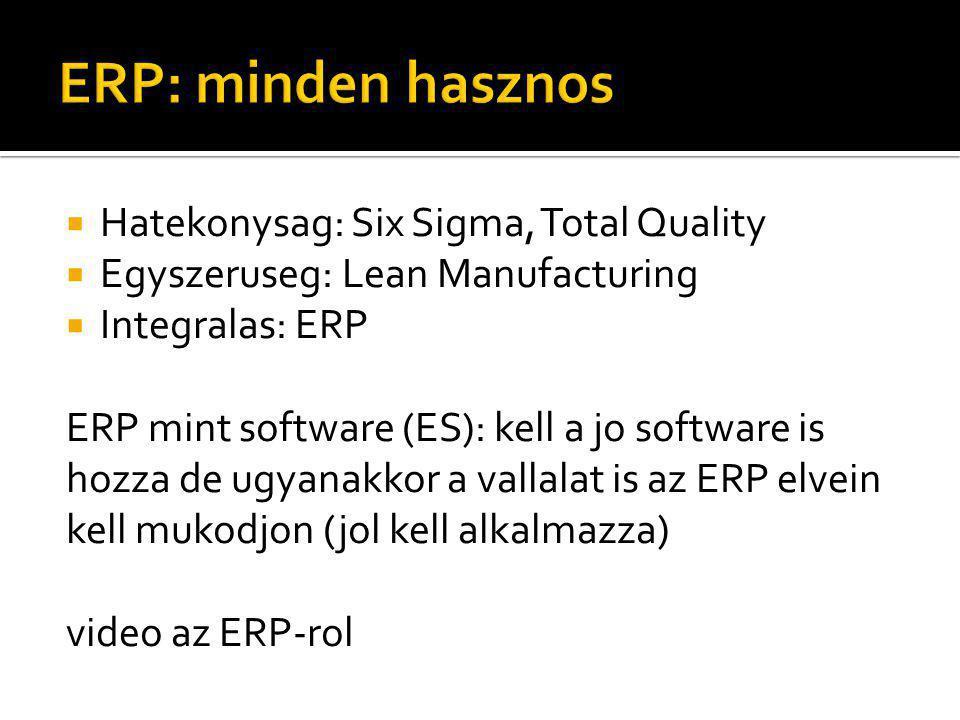  Hatekonysag: Six Sigma, Total Quality  Egyszeruseg: Lean Manufacturing  Integralas: ERP ERP mint software (ES): kell a jo software is hozza de ugyanakkor a vallalat is az ERP elvein kell mukodjon (jol kell alkalmazza) video az ERP-rol