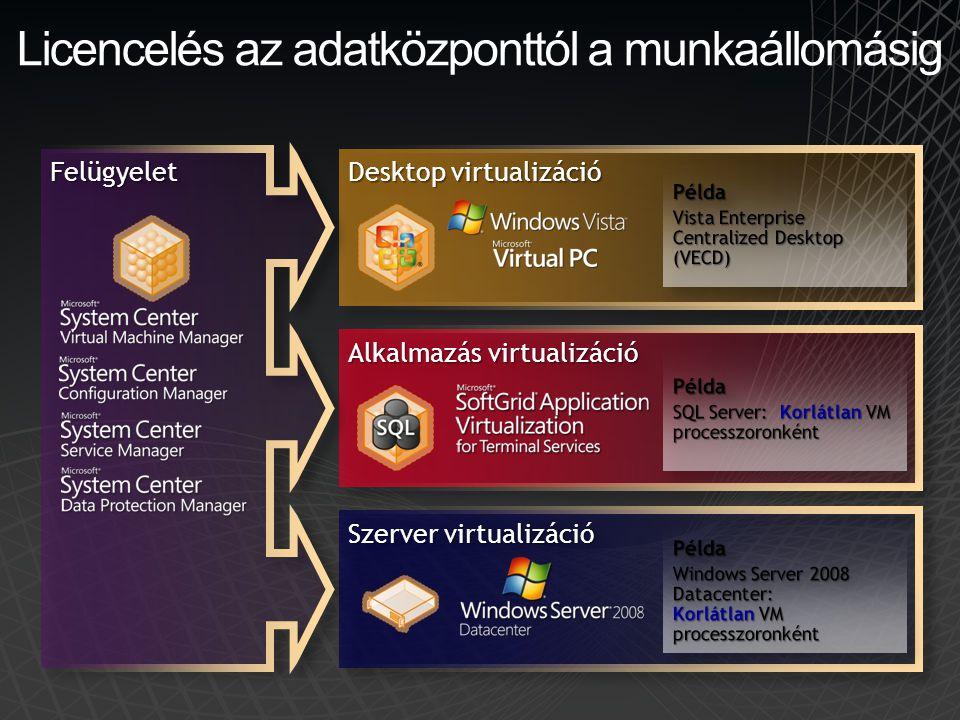 Licencelés az adatközponttól a munkaállomásig Desktop virtualizáció Alkalmazás virtualizáció Szerver virtualizáció FelügyeletFelügyelet