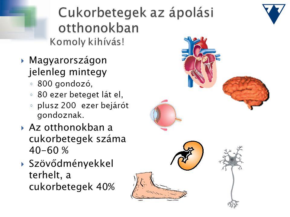  Magyarországon jelenleg mintegy ◦ 800 gondozó, ◦ 80 ezer beteget lát el, ◦ plusz 200 ezer bejárót gondoznak.  Az otthonokban a cukorbetegek száma 4
