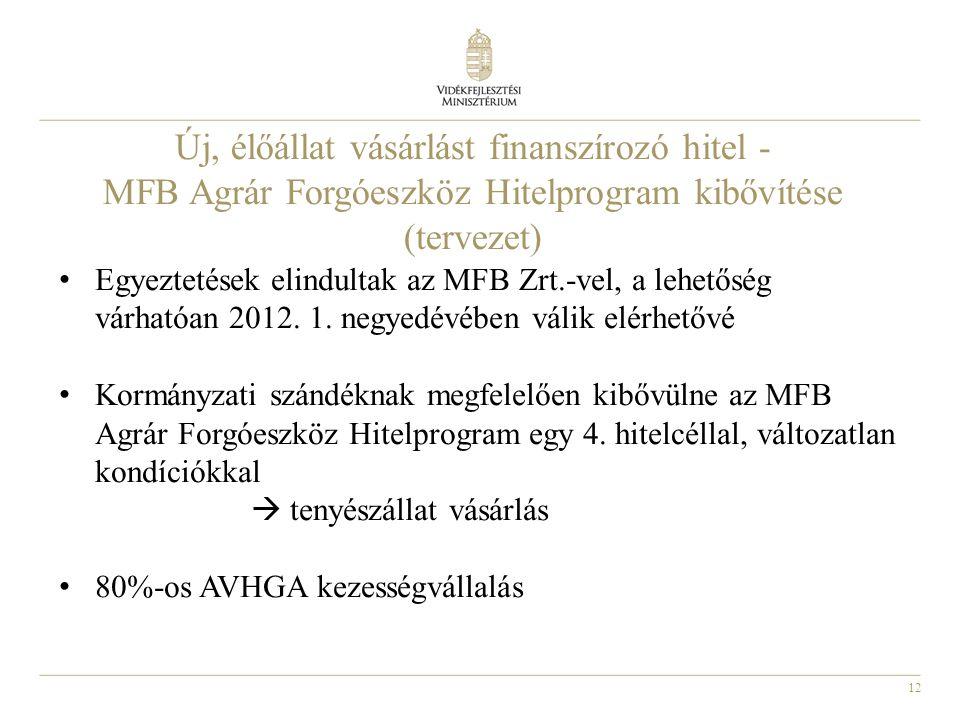 12 • Egyeztetések elindultak az MFB Zrt.-vel, a lehetőség várhatóan 2012. 1. negyedévében válik elérhetővé • Kormányzati szándéknak megfelelően kibővü