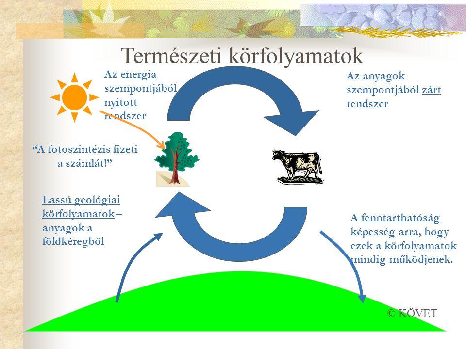 Az anyagok szempontjából zárt rendszer Lassú geológiai körfolyamatok – anyagok a földkéregből A fenntarthatóság képesség arra, hogy ezek a körfolyamatok mindig működjenek.