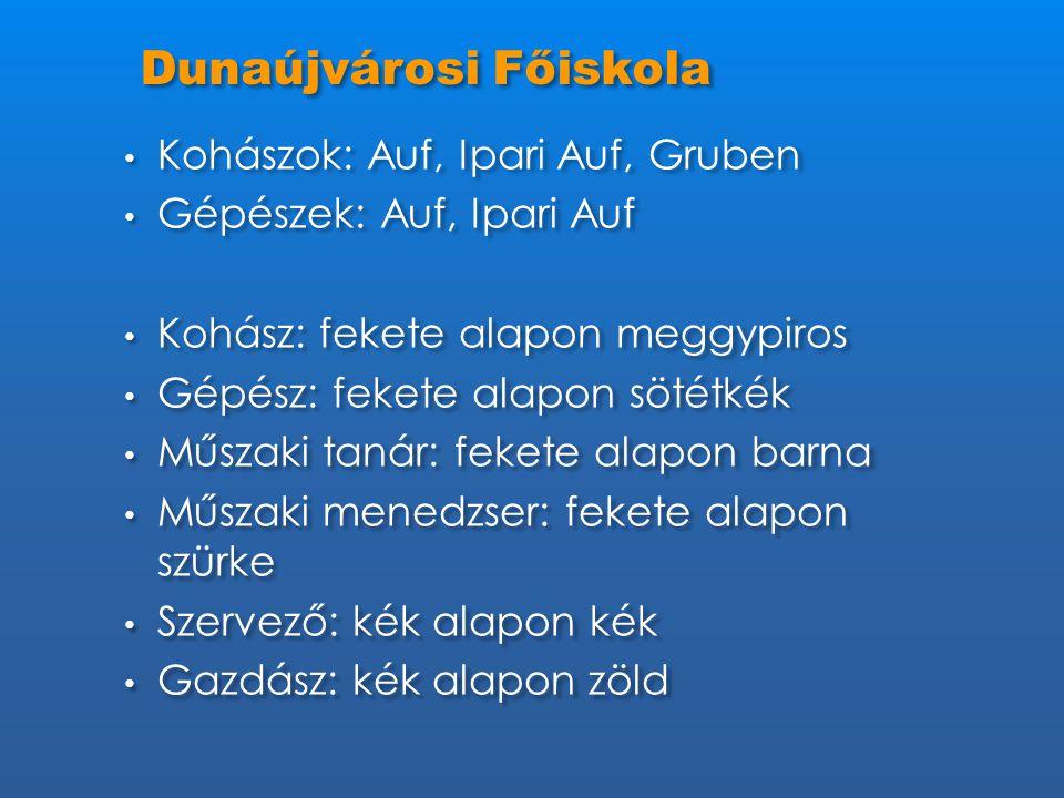 Dunaújvárosi Főiskola • Kohászok: Auf, Ipari Auf, Gruben • Gépészek: Auf, Ipari Auf • Kohász: fekete alapon meggypiros • Gépész: fekete alapon sötétké