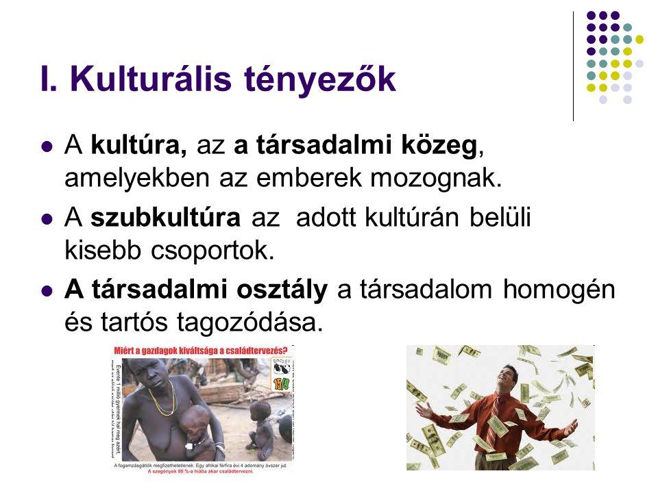 I.Kulturális tényezők  A kultúra, az a társadalmi közeg, amelyekben az emberek mozognak.