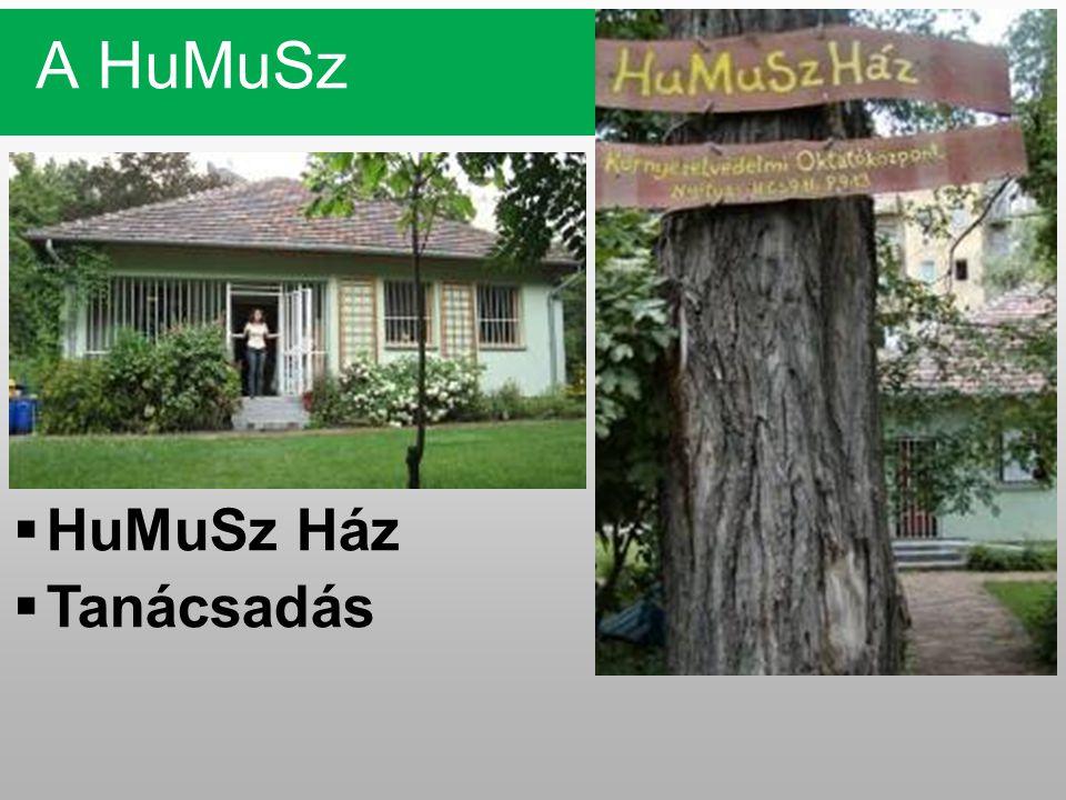 A HuMuSz  HuMuSz Ház  Tanácsadás