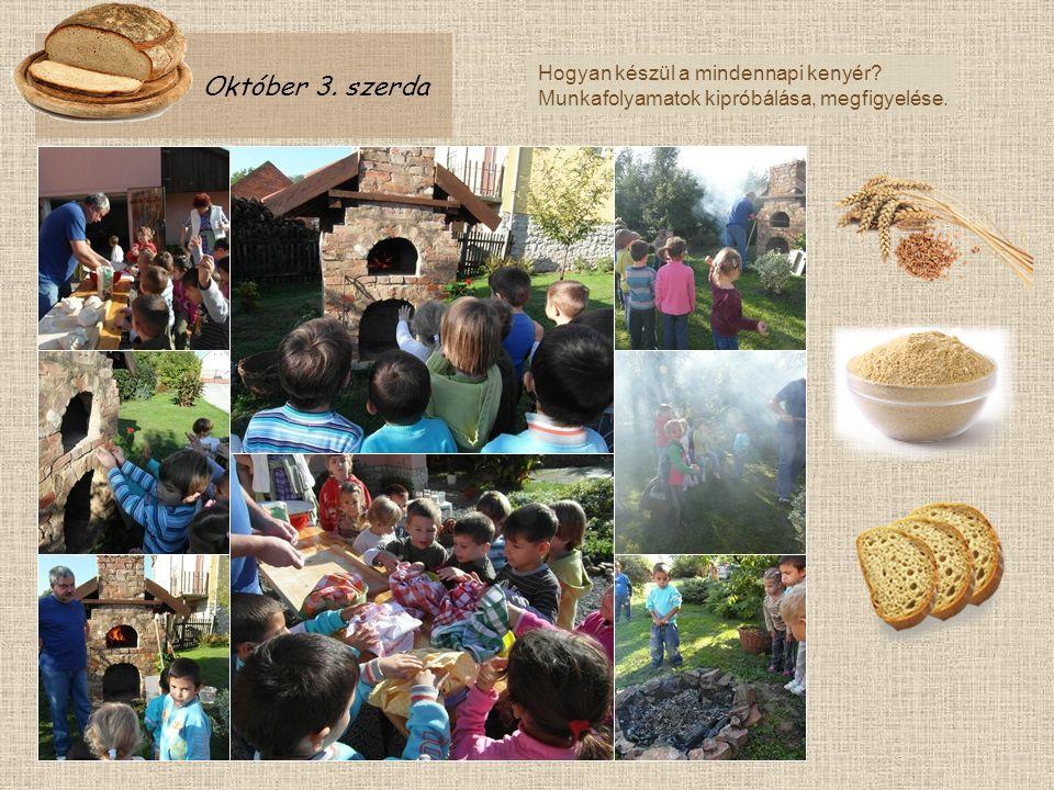 Október 3. szerda Hogyan készül a mindennapi kenyér? Munkafolyamatok kipróbálása, megfigyelése.