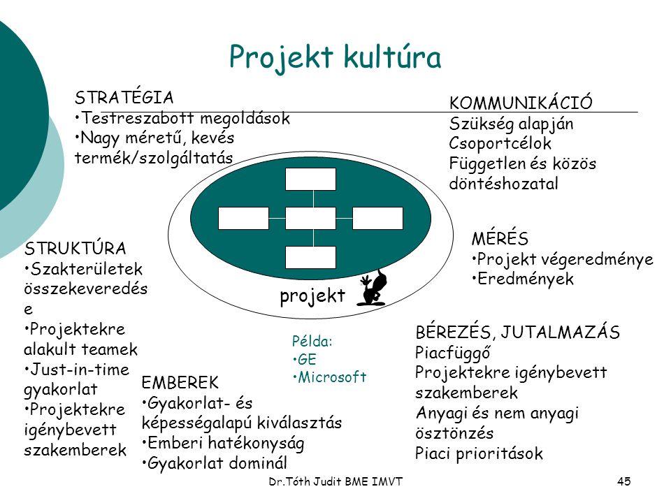 Dr.Tóth Judit BME IMVT45 Projekt kultúra STRATÉGIA •Testreszabott megoldások •Nagy méretű, kevés termék/szolgáltatás STRUKTÚRA •Szakterületek összekev